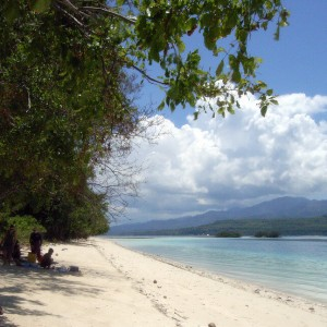 Insulele Moluce